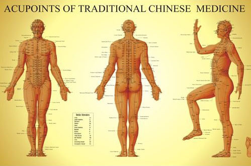 acupuncture-aliceacuphysio-499w